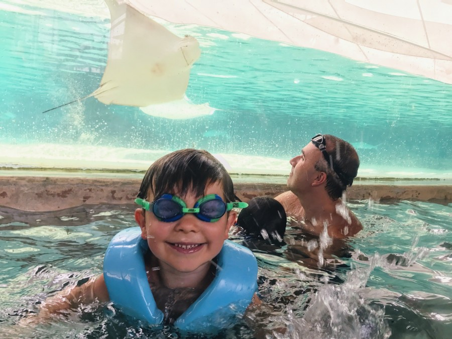 Adventure Cove Waterpark at Resorts World Sentosa: a Day of Splashing Fun