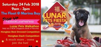 Lunar Pets Fiesta