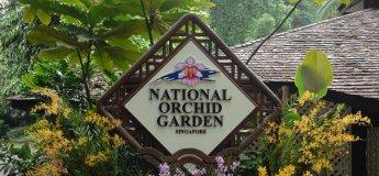 Orchid Garden Tour