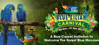Blue-Zilian Carnival